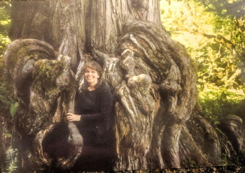 in tree roots 2000.jpg