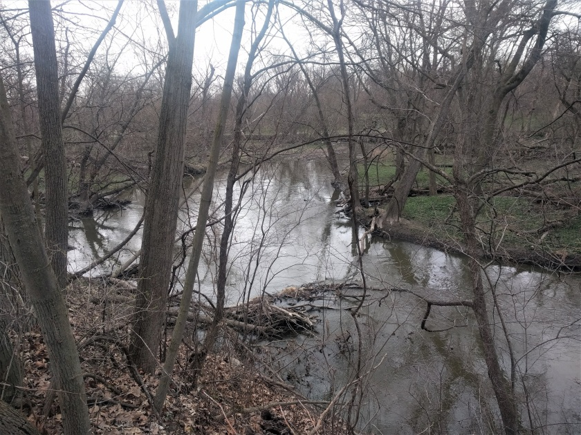river resized